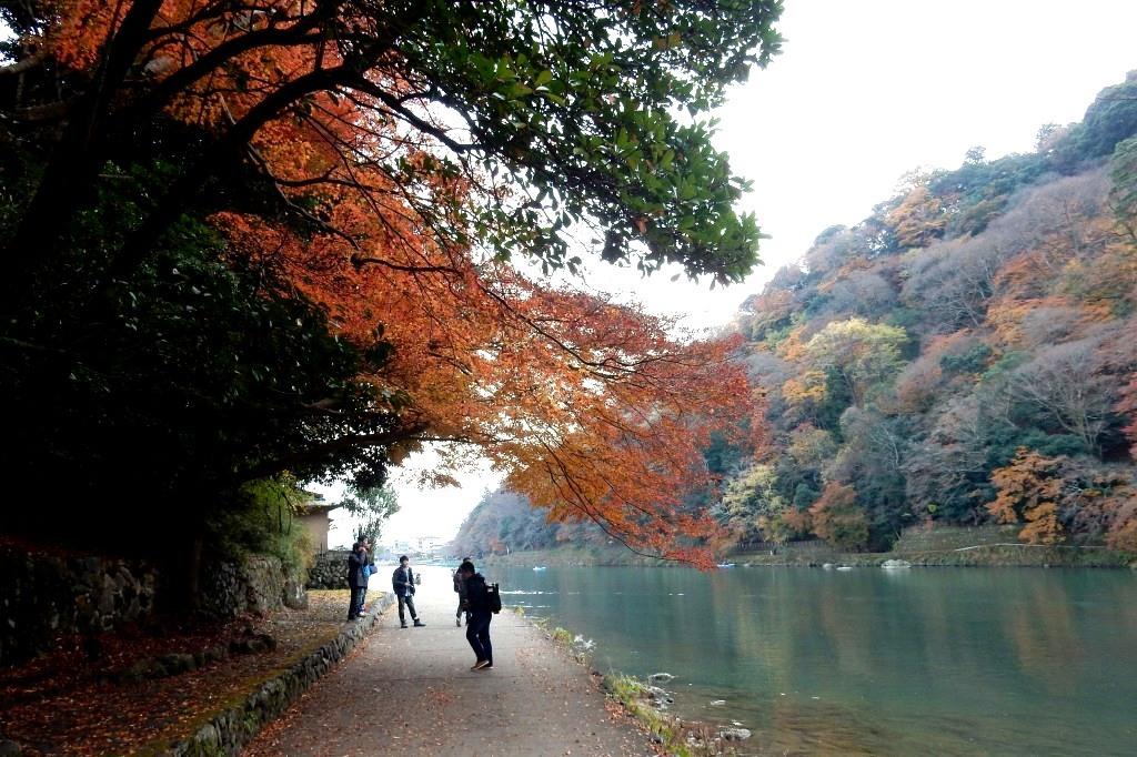 嵐山紅葉2016 053
