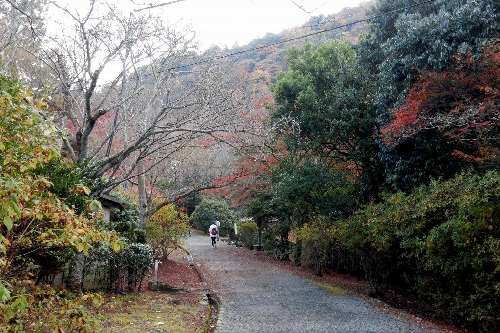 嵐山紅葉2016 035
