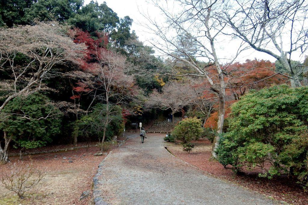 嵐山紅葉2016 034