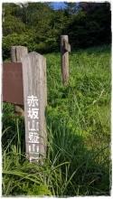 akasakasaka (6)