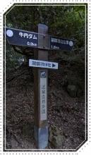 諭鶴羽山 (9)