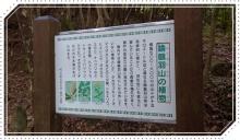 諭鶴羽山 (19)
