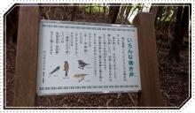 諭鶴羽山 (22)