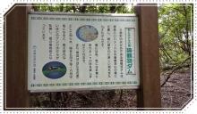 諭鶴羽山 (23)