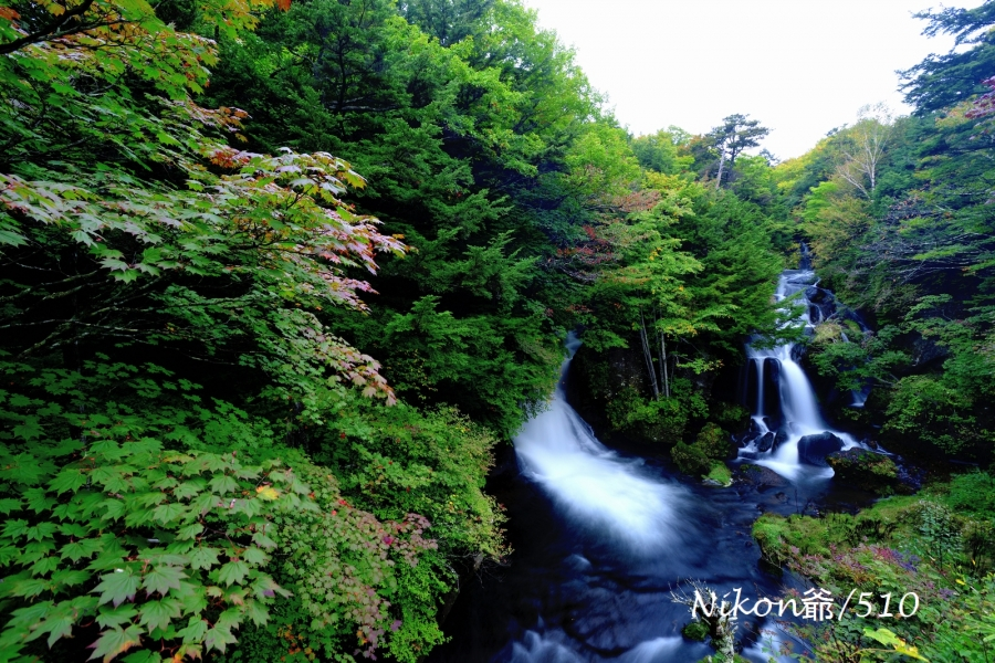 竜頭の滝 2016 sn