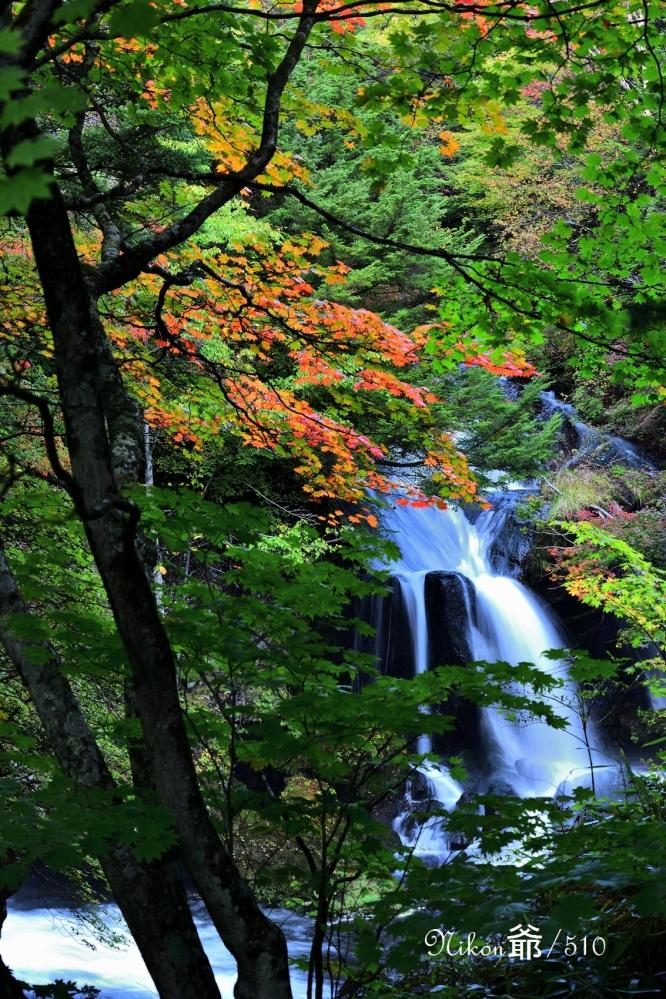 竜頭の滝 3sn