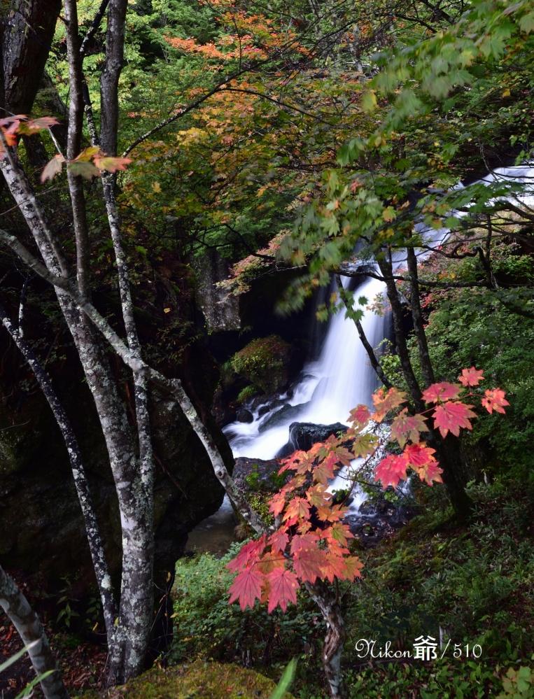 竜頭の滝 2sn