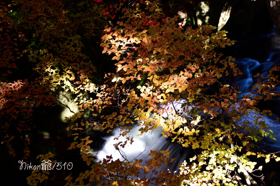 竜頭の滝 (7)sn