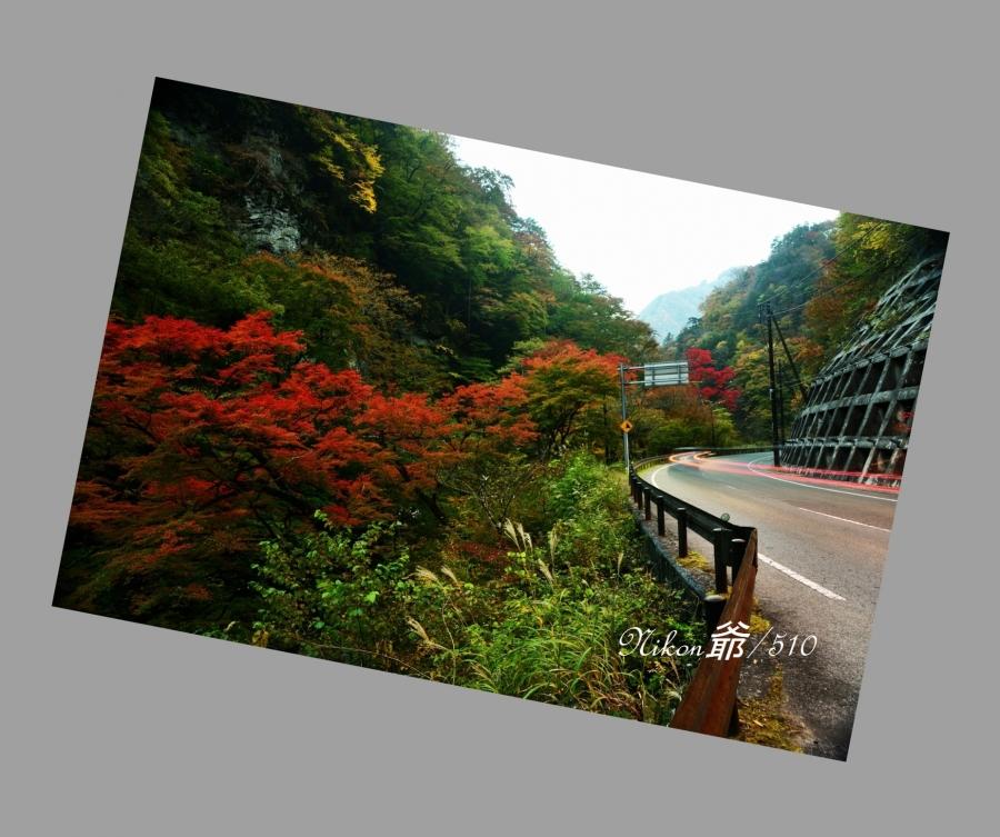 中津峡 (60)s斜め