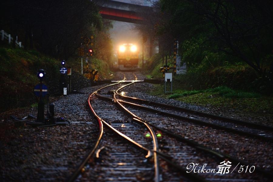 渡良瀬渓谷鉄道  (33)snf