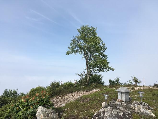 八ヶ尾山/山頂の様子1
