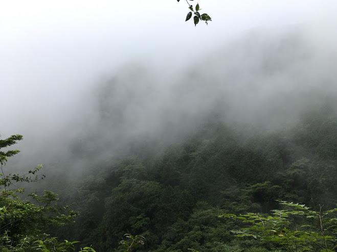 蓬莱山/霧