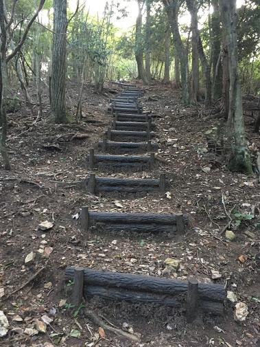 小金ヶ嶽/階段