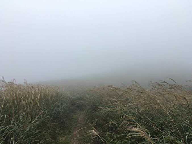 生石ヶ峰/霧2