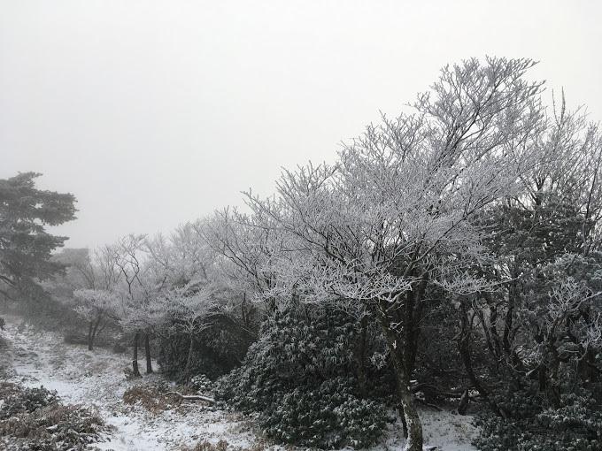 段ヶ峰/着雪