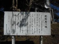 2016-11-03-0002.jpg