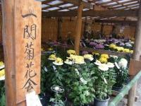 2016-10-22-中尊寺164