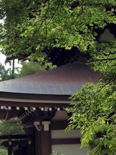 円覚寺仏殿20160907