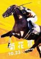 2016菊花賞ポス