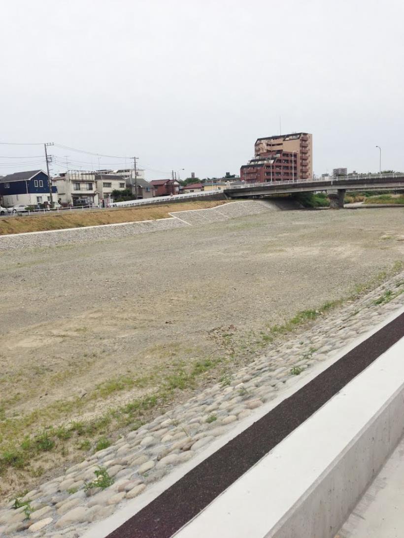 asakawakareta05.jpg