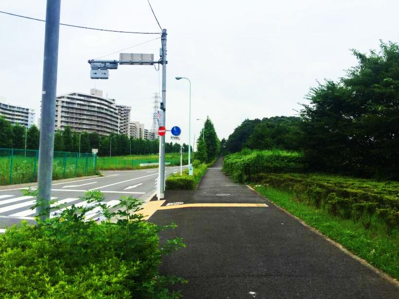jogi46.jpg