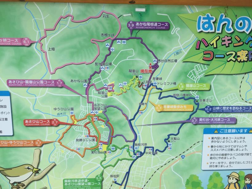 kashiwagiyama01.jpg