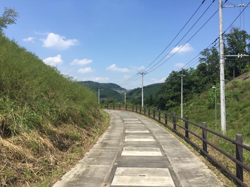 kashiwagiyama05.jpg