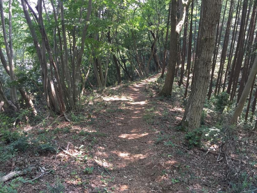 kashiwagiyama69.jpg