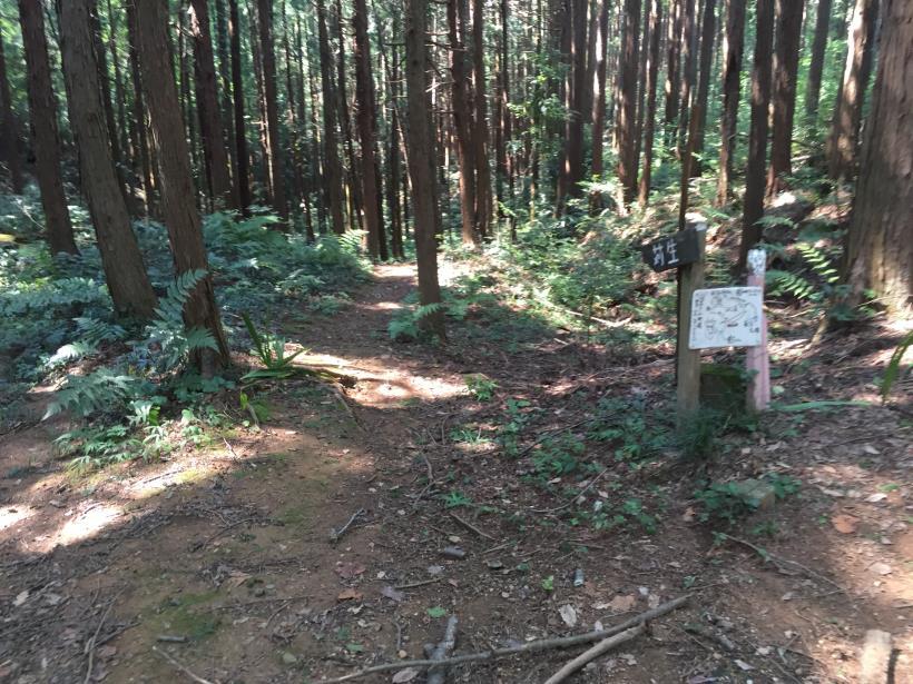 kashiwagiyama82.jpg