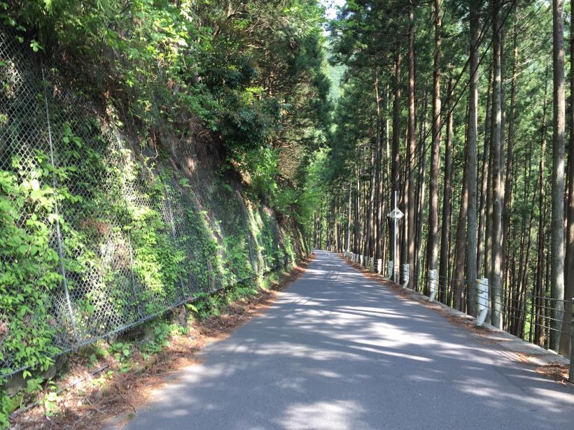 kawanoriyama03.jpg