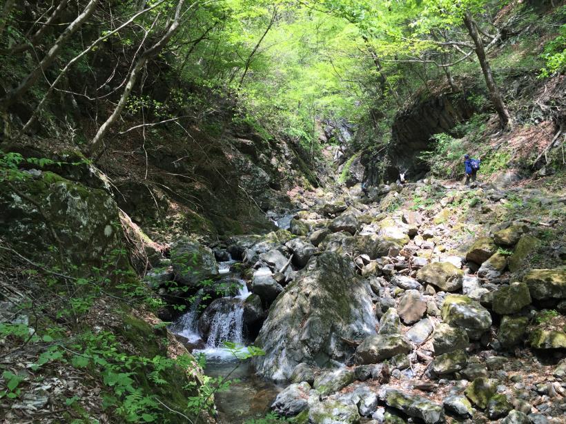 kawanoriyama118.jpg