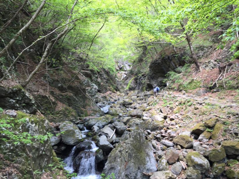 kawanoriyama120.jpg
