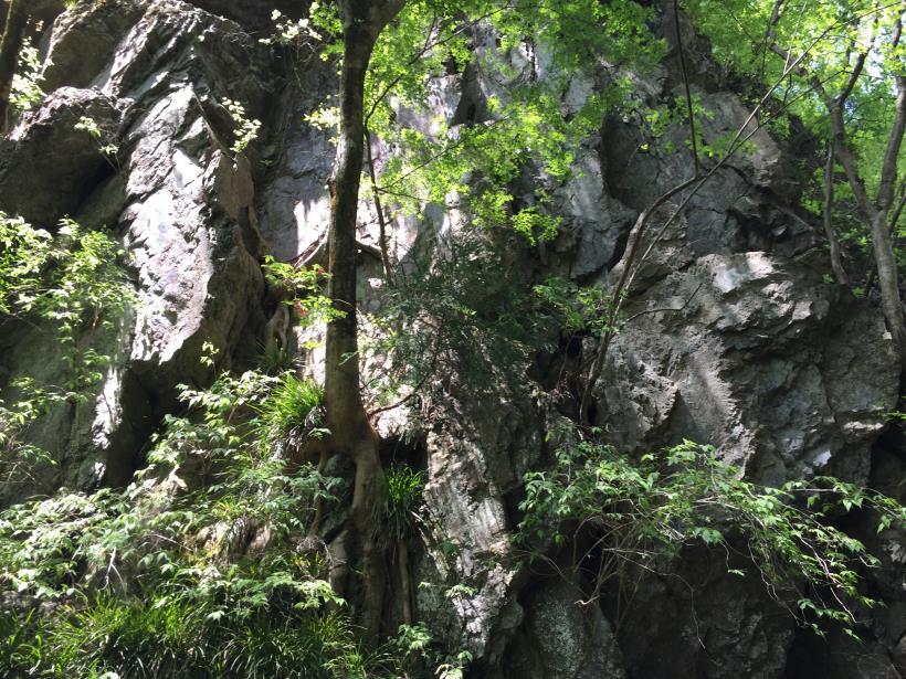 kawanoriyama22.jpg
