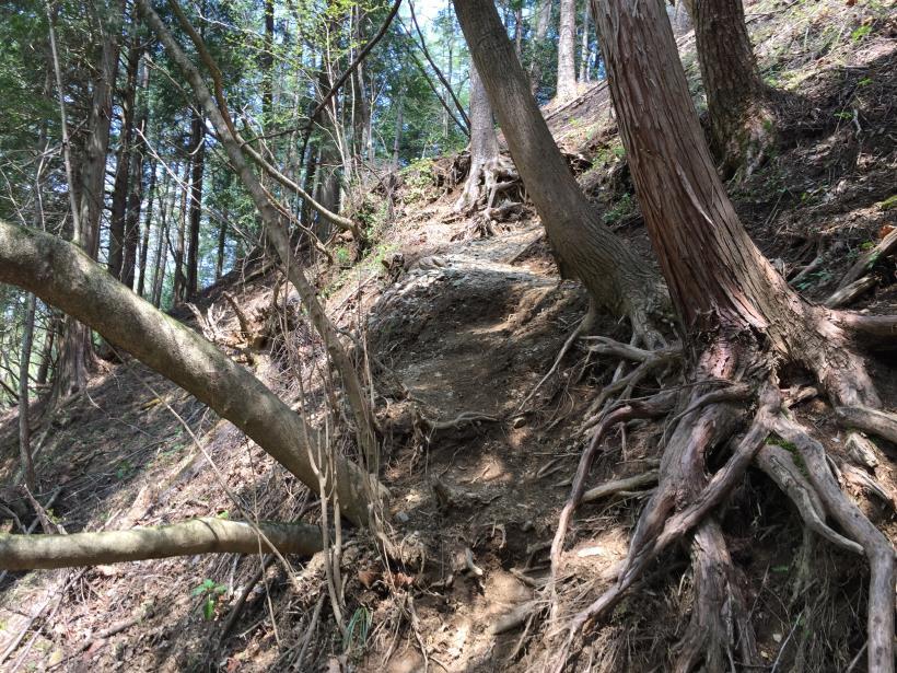 kawanoriyama240.jpg