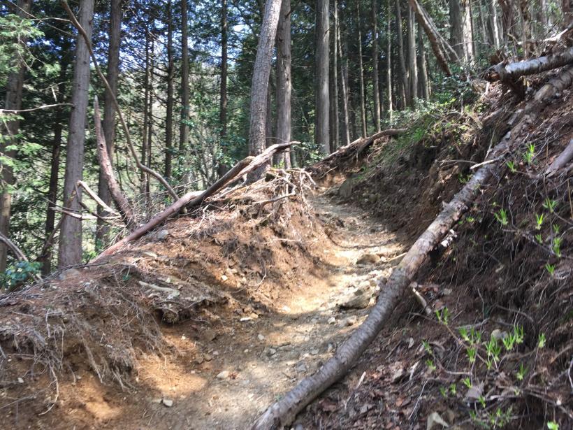 kawanoriyama245.jpg