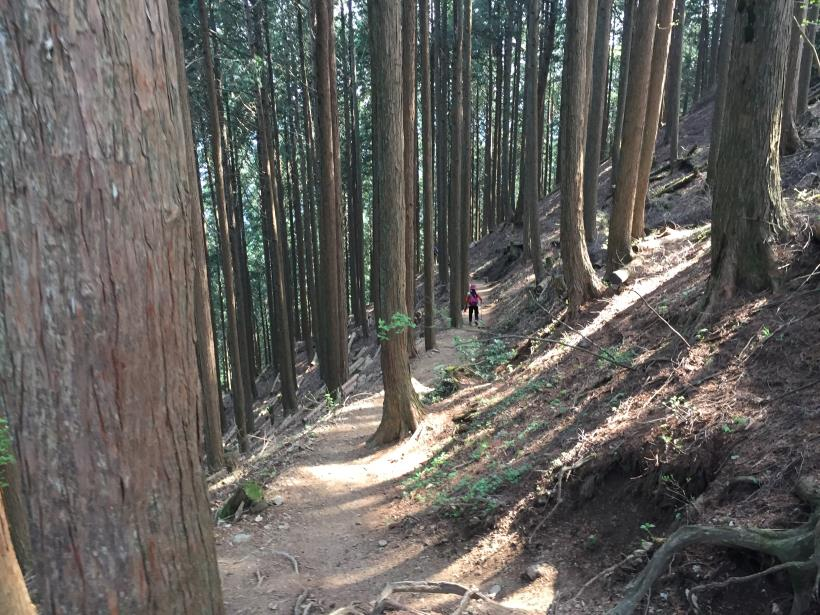 kawanoriyama286.jpg