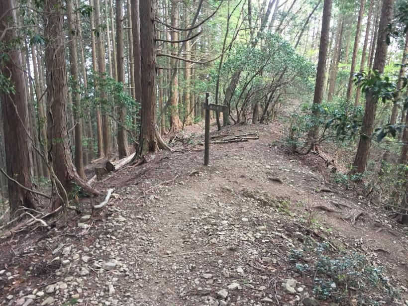 kawanoriyama287.jpg