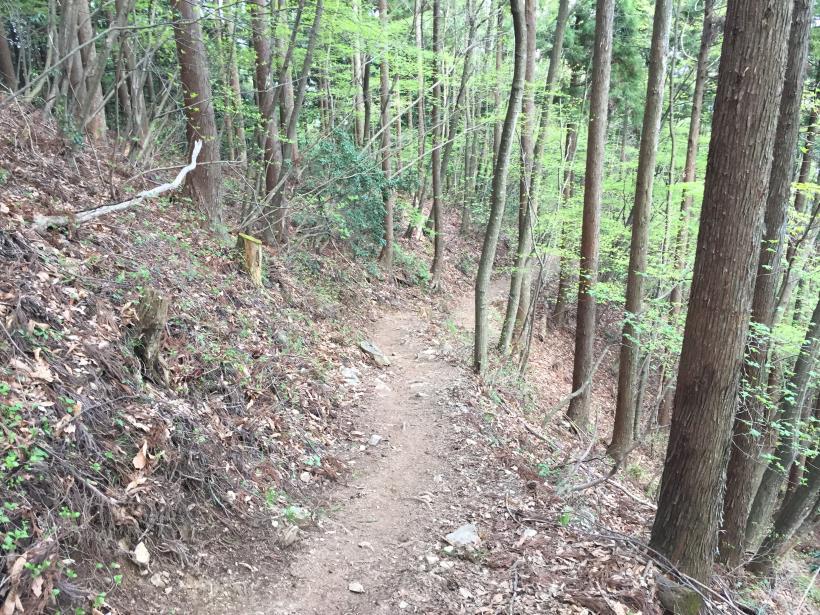 kawanoriyama289.jpg