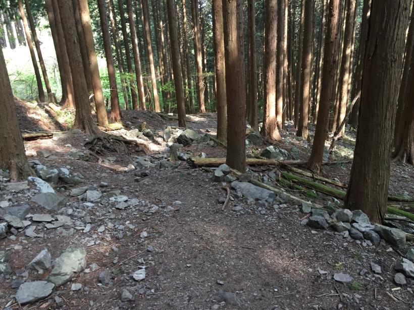 kawanoriyama295.jpg