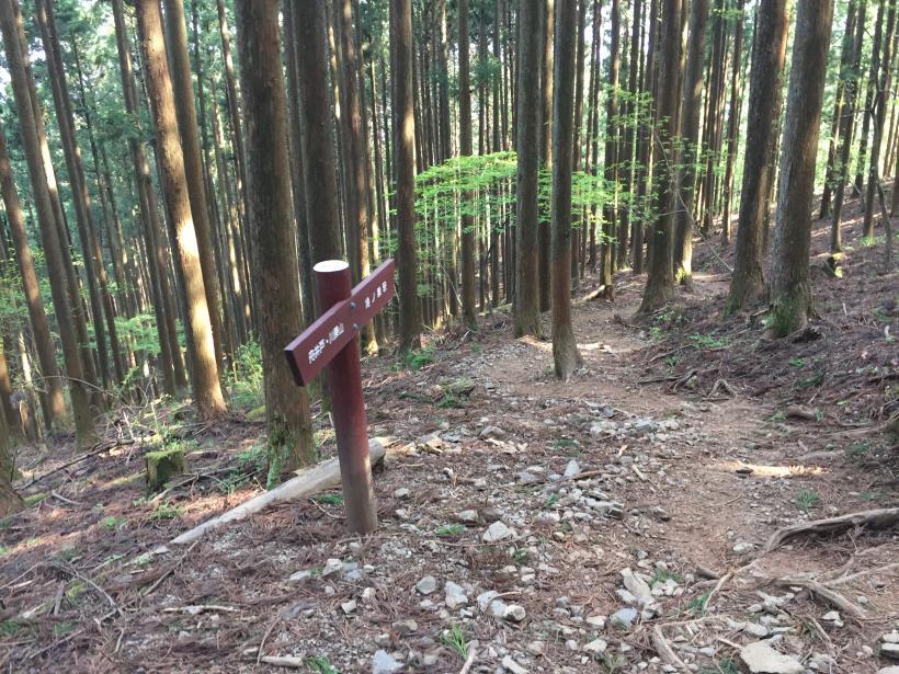 kawanoriyama298.jpg