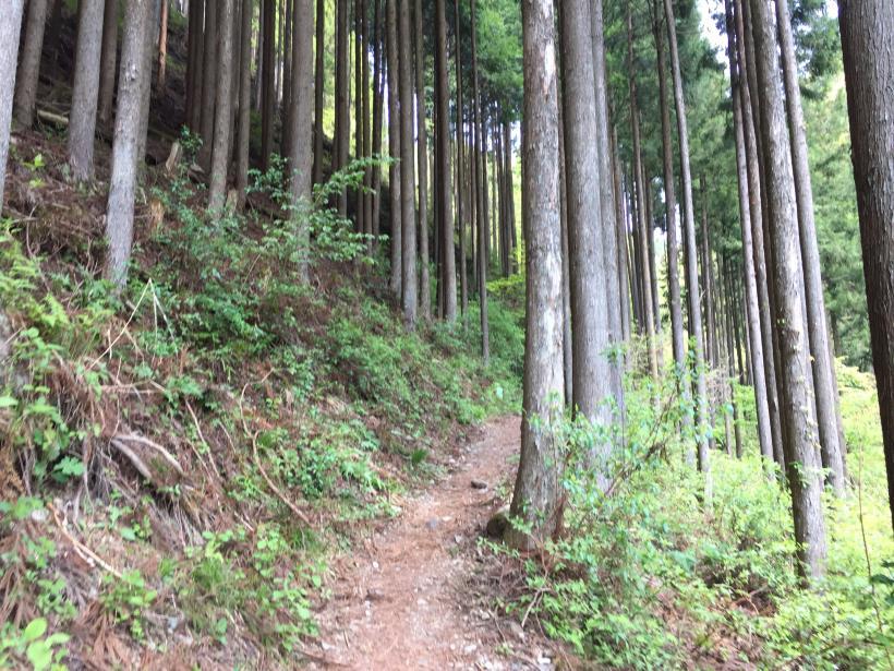 kawanoriyama30.jpg