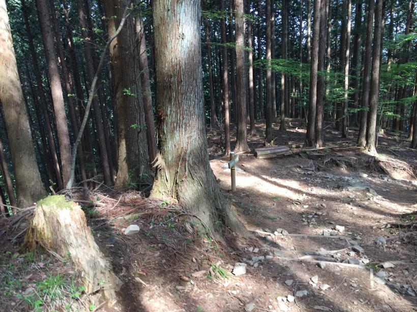kawanoriyama301.jpg