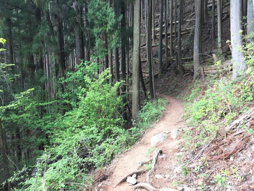 kawanoriyama308.jpg