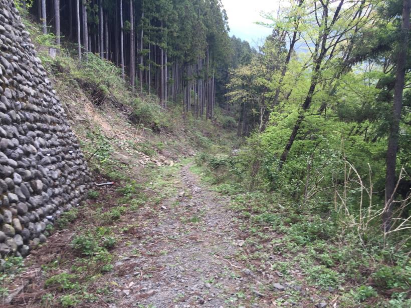 kawanoriyama311.jpg