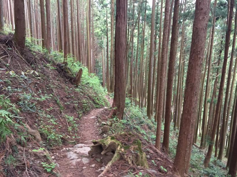 kawanoriyama316.jpg