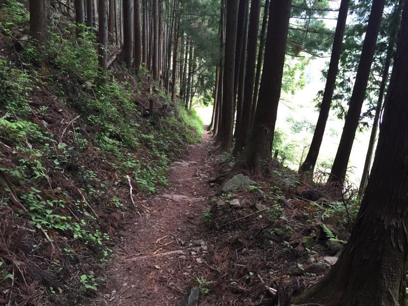 kawanoriyama317.jpg