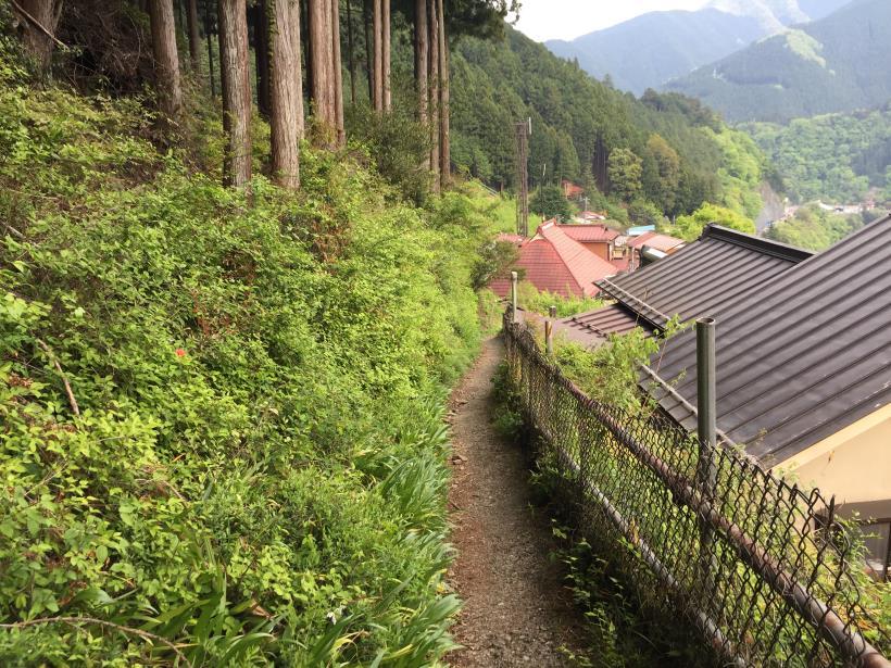 kawanoriyama319.jpg