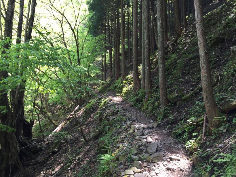kawanoriyama45.jpg