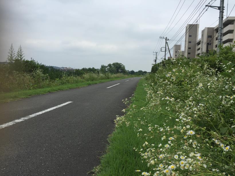 kurahonesawa29.jpg