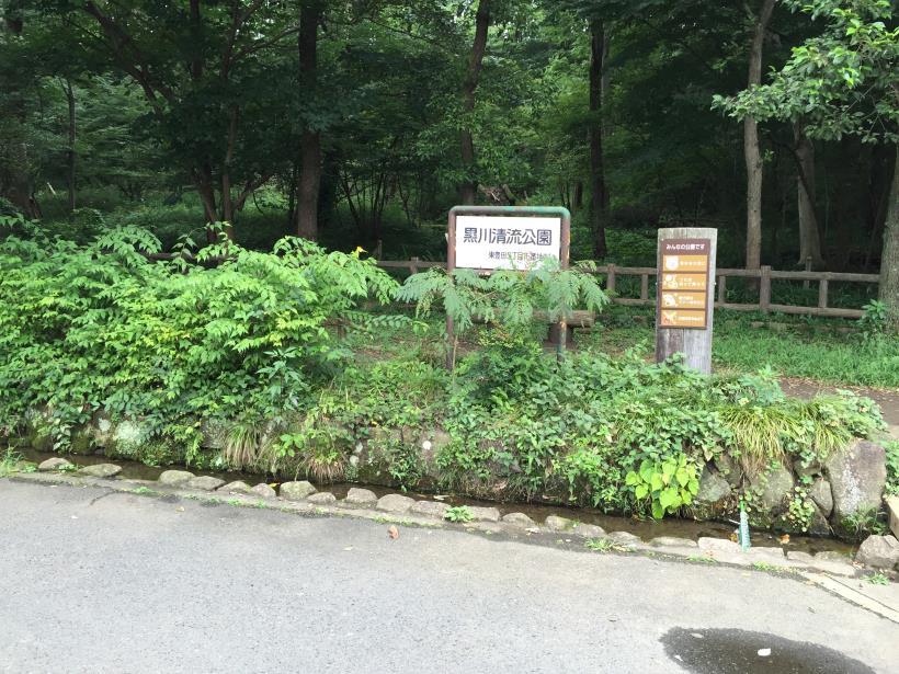 kurokawa01.jpg